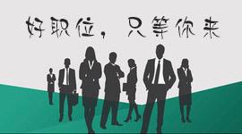 丽水振华报关有限公司在青田人才市场(青田人才市场)的宣传图片