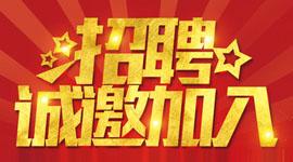 浙江双宇汽车配件有限公司在青田人才市场(青田人才市场)的宣传图片